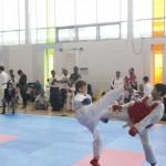 WelcomeHouse-KidsKarateCompetition-KarateOntario-TorontoOpen-2014-14
