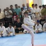 WelcomeHouse-KidsKarateCompetition-KarateOntario-TorontoOpen-2014-20